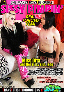 Sissy Pimpin' Box Cover