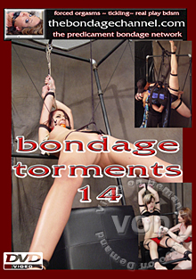 Bondage Torments 14 Box Cover