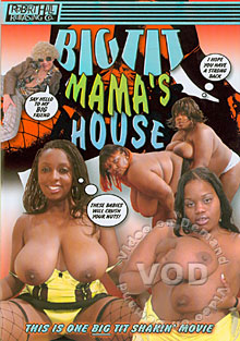 Big Tit Mama's House Box Cover