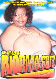 The Amazing Norma Stitz Box Cover