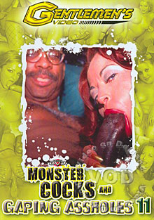 Monster Cocks And Gaping Assholes 11 Box Cover