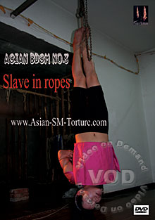 Asian BDSM No. 3 - Slave In Rope Box Cover