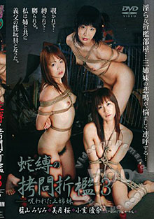 A.B. Painful BDSM Lesson 3 Box Cover