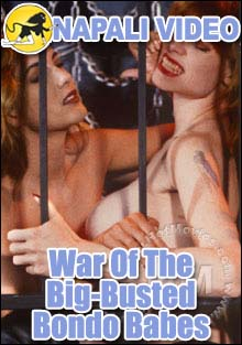 War Of The Big-Busted Bondo Babes Box Cover