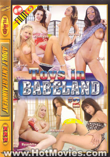 Toys In Babeland #2 Box Cover