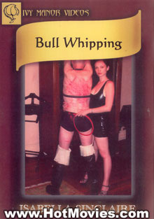 Bull Whipping Box Cover
