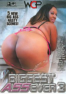 Biggest Ass Ever 3 Box Cover