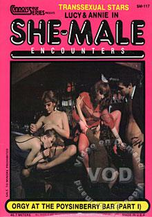 She Male Encounters 117 - Orgy At The Poysinberry Bar Part 1