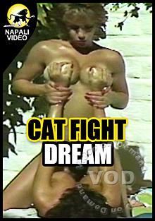 Cat Fight Dream Box Cover