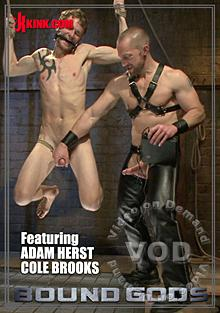 Bound Gods - Adam Herst Has His Way With His Helpless Captive Box Cover