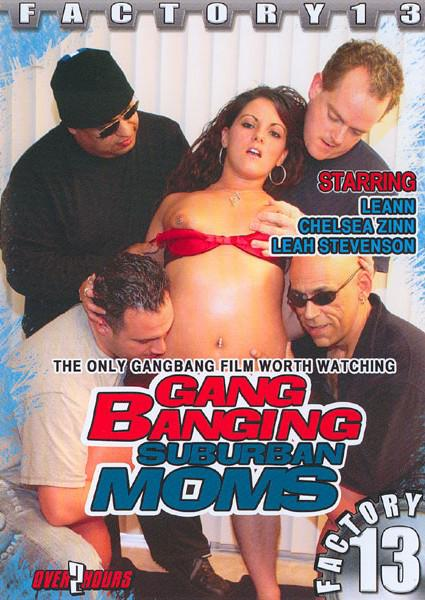 Gang Banging Suburban Moms Box Cover
