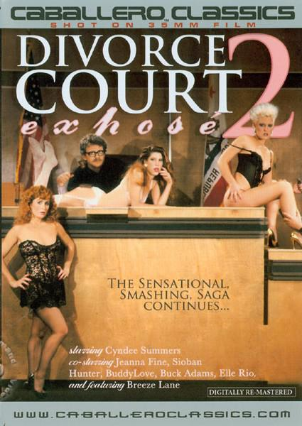 Divorce Court Expose 2 Box Cover