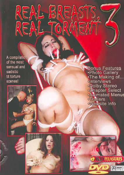Real Breasts Real Torment 3 Box Cover