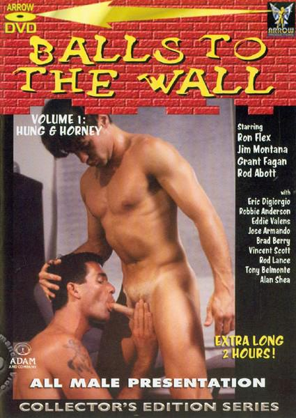 The ideal wall to porn series