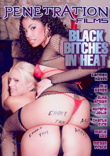 Black Bitches In Heat Box Cover