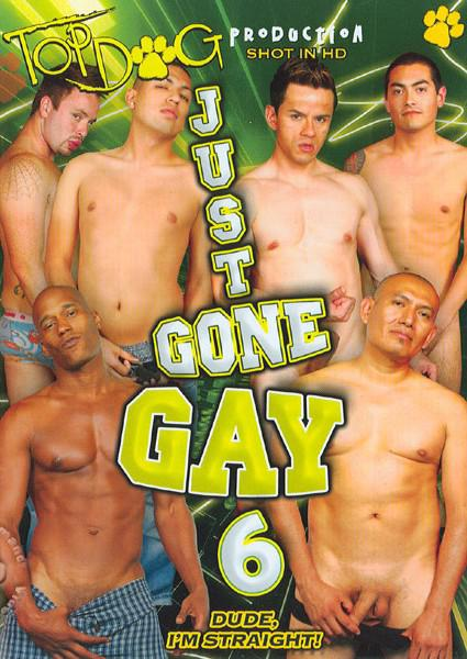 Just Gone Gay 6 Box Cover