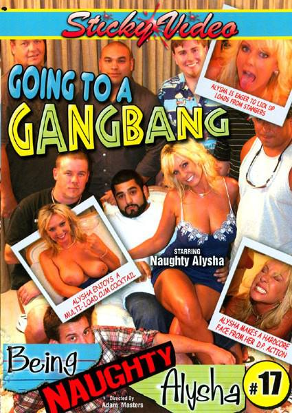 Being Naughty Alysha #17 - Going To A Gangbang Box Cover