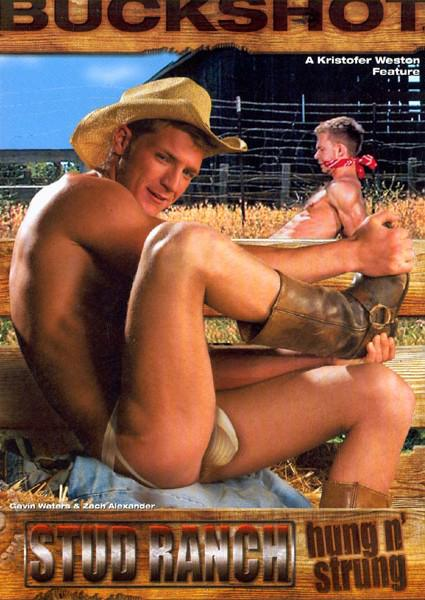 Stud Ranch - Hung N' Strung Box Cover