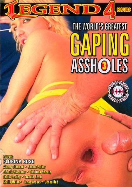 The World's Greatest Gaping Assholes 3 Box Cover