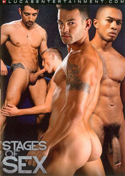 Stages Of Sex Box Cover
