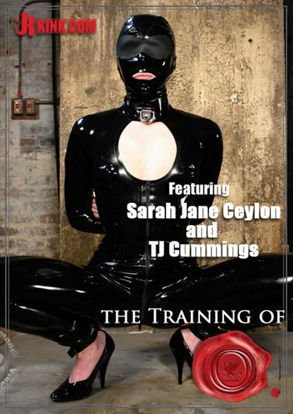 Remarkable, the sex and submission sarah jane ceylon something is