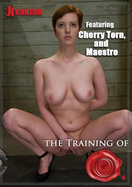 cherry torn training of o