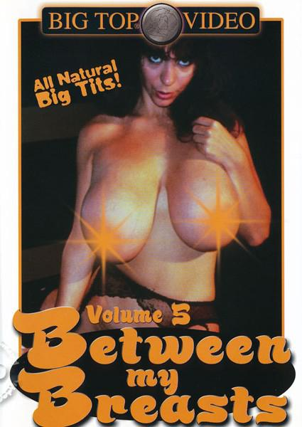 Between My Breasts Volume 5 Box Cover