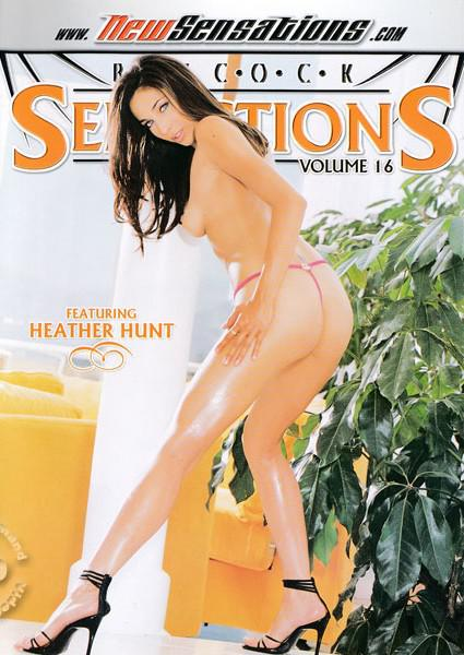 Big Cock Seductions Volume 16 Box Cover