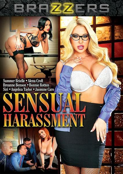 Sensual Harassment Box Cover