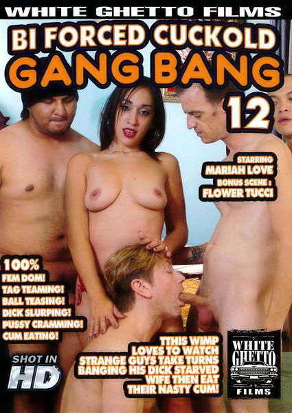 Bi Cuckold Gang Bang 12 Box Cover