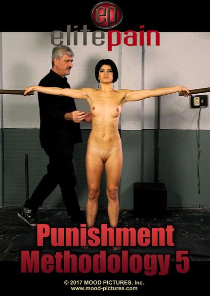 Punishment Methodology 5 Box Cover