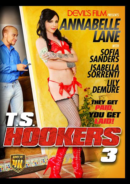 T.S. Hookers 3 Box Cover