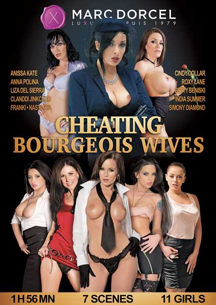 Cheating Bourgeois Wives (English) Box Cover