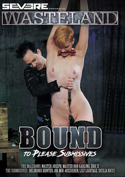 Bound To Please Submissives Box Cover