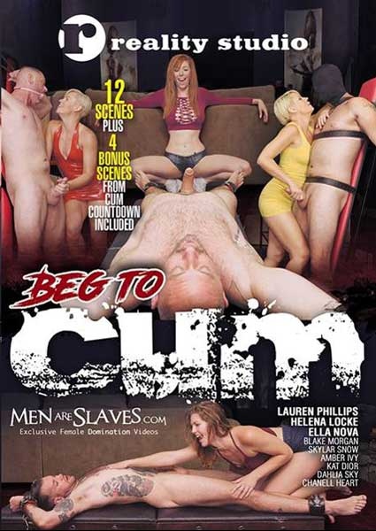 Beg To Cum Box Cover