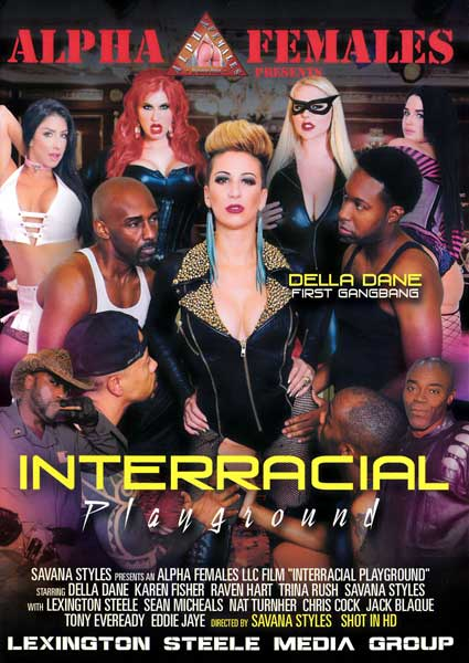 Interracial Playground Box Cover