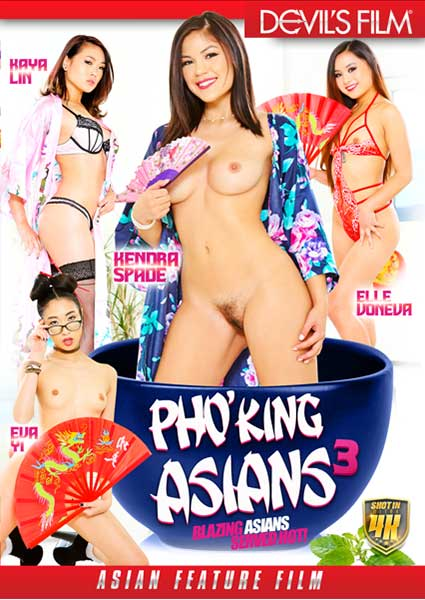 Pho'King Asians 3 Box Cover