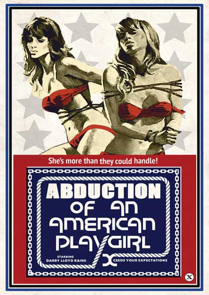 Abduction Of An American Playgirl Box Cover