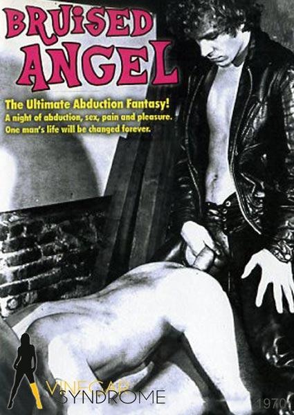 Bruised Angel Box Cover