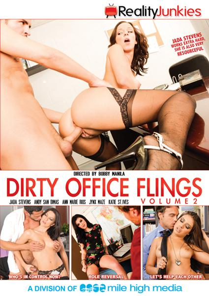 Dirty Office Flings 2 Box Cover
