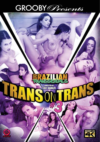 Brazilian Transsexuals - Trans On Trans #3 Box Cover