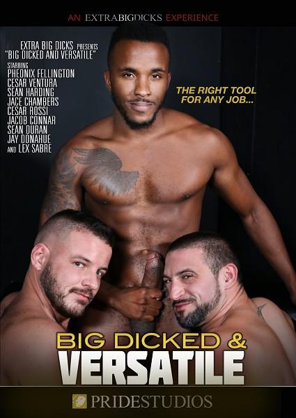Big Dicked & Versatile Box Cover