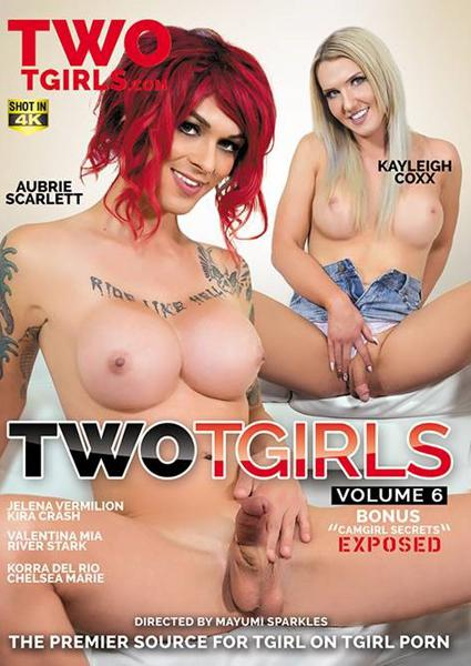 Two TGirls Volume 6 Box Cover