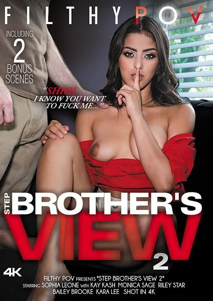 Step Brother's View 2 Box Cover