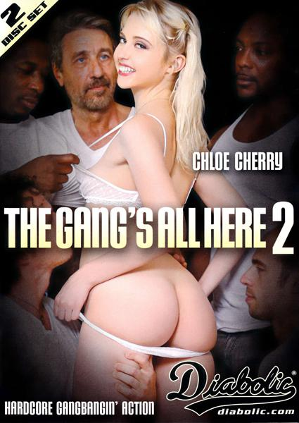 The Gang's All Here 2 (Disc 1) Box Cover