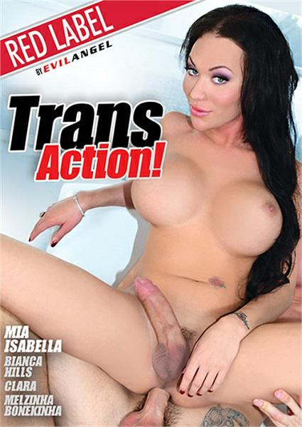 Trans Action! Box Cover - Login to see Back