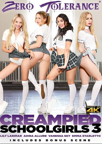 Creampied Schoolgirls 3 Box Cover