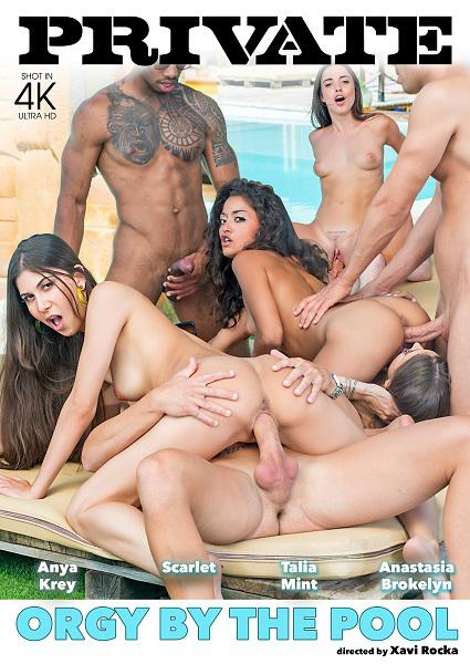 Orgy By The Pool Box Cover