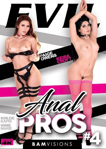Anal Pros 4 Box Cover