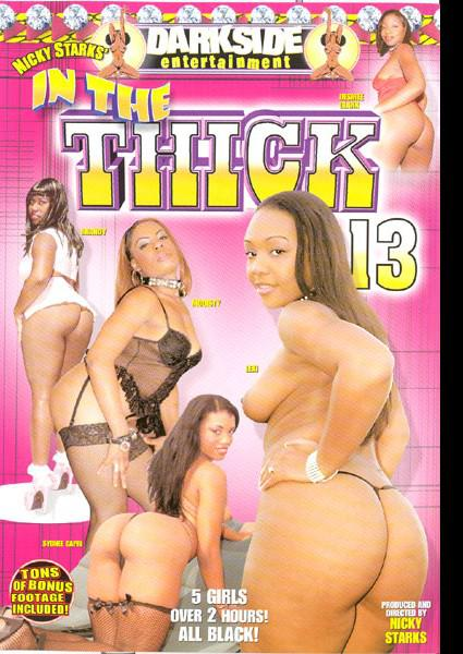 In The Thick 13 Box Cover